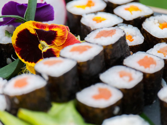 hostelería sushita